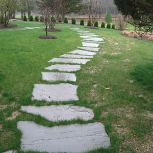 Bluestone irregular flagging walkway