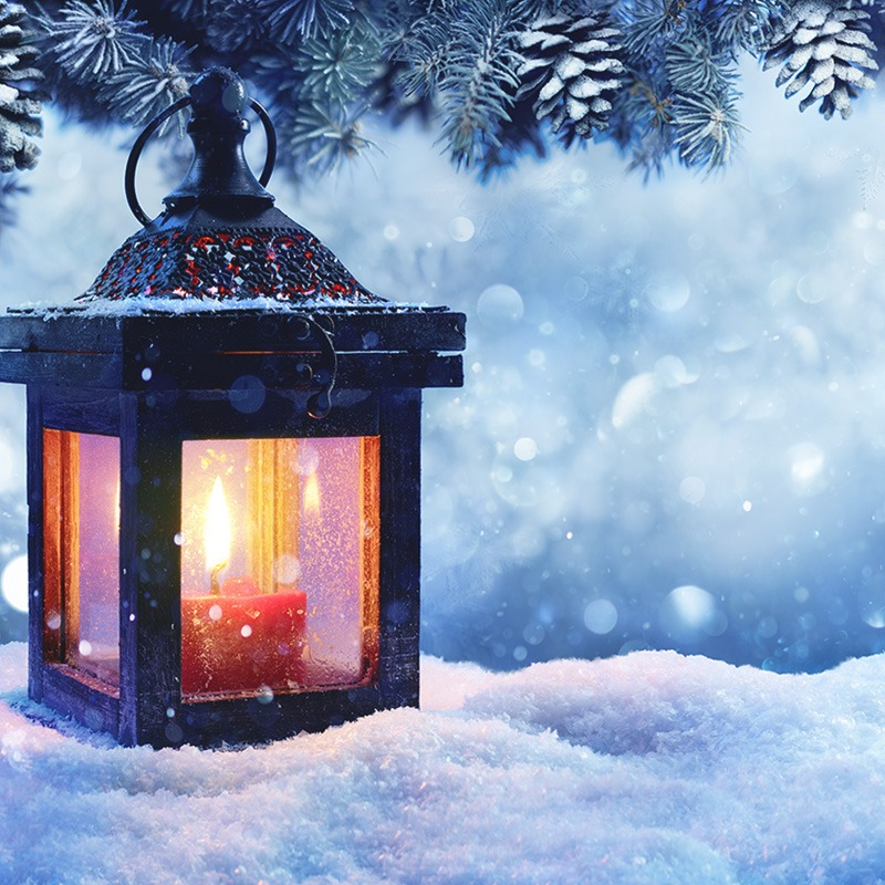 image of snow, branches, pinecones and a lit up lantern